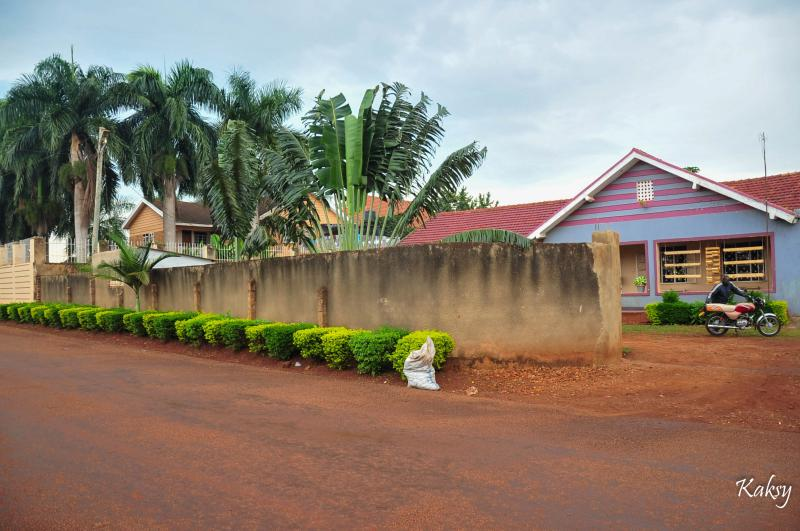 Venchester Guesthouse